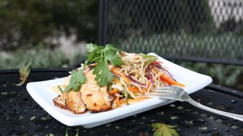 Teriyaki Chicken and Asian Noodle Salad