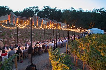Dinner in the vineyard