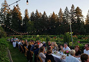 Field and Vine Dinner Image