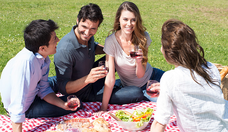People sitting on a blanket with glasses of red wine