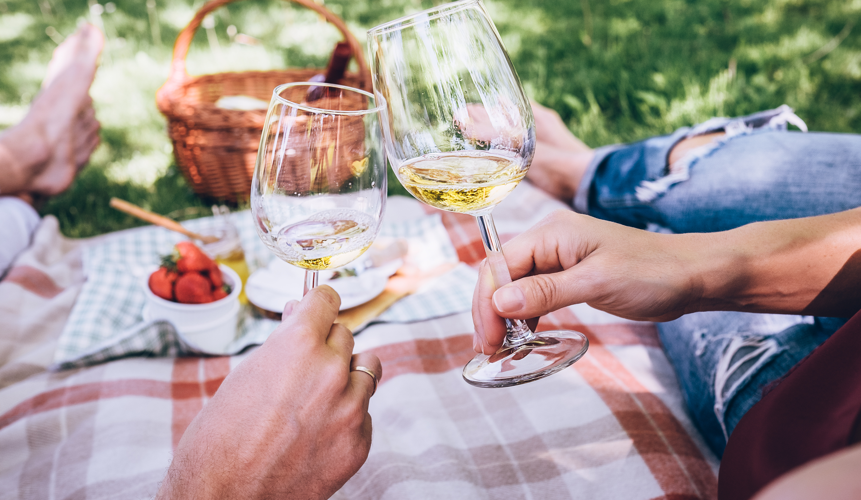 People clinking wine glasses over a picnic blanket.