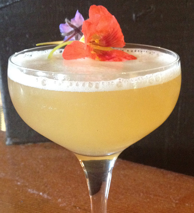 the-bumblebees-knees